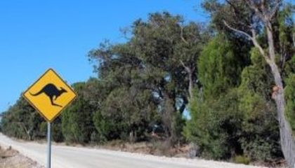 driving in Australia with overseas licence